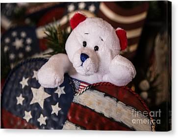 Patriotic Teddy Bear Canvas Print