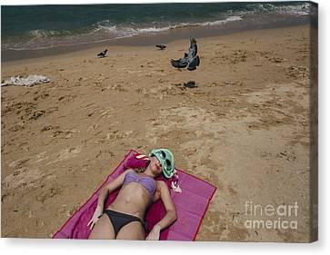 Canvas Print featuring the photograph Pattaya Beach by Setsiri Silapasuwanchai