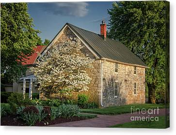 Canvas Print featuring the photograph Patterns Of Shadow And Light by Lois Bryan