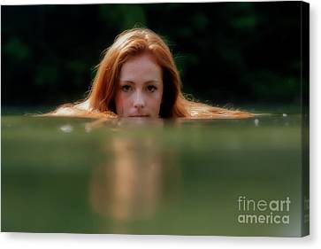 Patty Looking Above The Water Canvas Print by Dan Friend