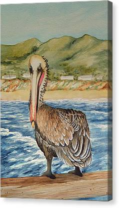 Canvas Print featuring the painting Paula's Pelican by Katherine Young-Beck