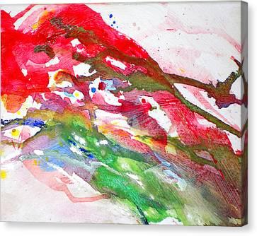 Paul's Flight Canvas Print by Ken Meyer jr