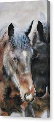 Bay Horse Canvas Print - Peace Brown Horse by Danielle Rosalie Pellicci
