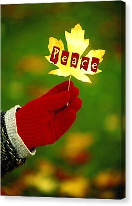 Peace Card Canvas Print