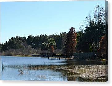 Canvas Print featuring the photograph Peace by Carol  Bradley
