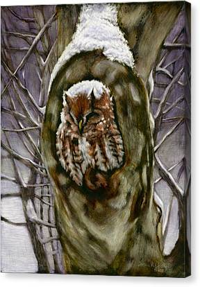 Winter Storm Canvas Print - Peace In The Storm - Eastern Screech Owl by Susan Donley