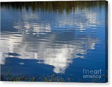Peace Canvas Print by Kathy McClure