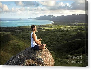 Peace On A Hillside Canvas Print by Brandon Tabiolo - Printscapes