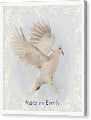 Canvas Print featuring the photograph Peace On Earth by Diane Alexander
