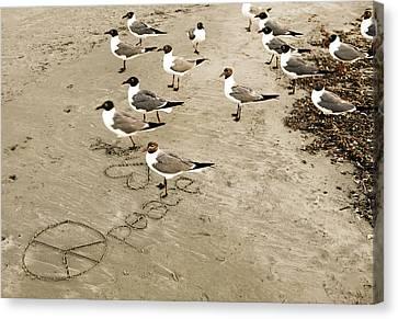 Peace On The Beach Canvas Print by Marilyn Hunt