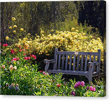 Peaceful Canvas Print by Amy Fose