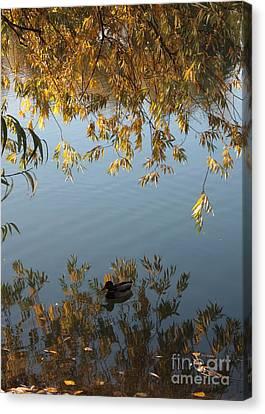 Beautiful Autumn Day Canvas Print - Peaceful Autumn Day by Carol Groenen