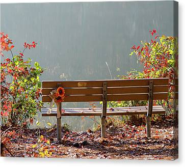 Canvas Print featuring the photograph Peaceful Bench by George Randy Bass