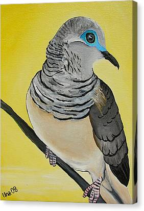 Peaceful Dove  Canvas Print by Una  Miller