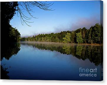 Canvas Print featuring the photograph Peaceful Dream by Douglas Stucky
