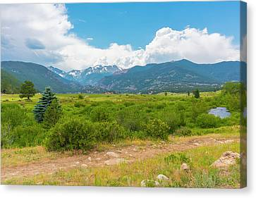 Peaceful Meadow Canvas Print
