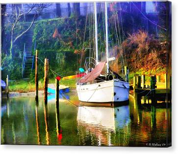 Canvas Print featuring the photograph Peaceful Morning In The Cove by Brian Wallace
