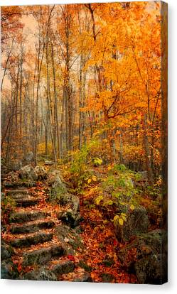 Peaceful Pathway Canvas Print by Kathy Jennings