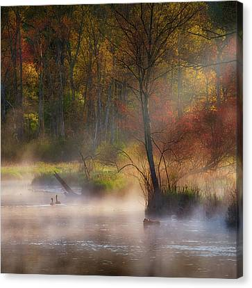 Light Rays Canvas Print - Peaceful Spring Morning Square by Bill Wakeley