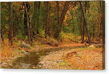 Peaceful Stream Canvas Print by Roena King