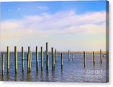 Canvas Print featuring the photograph Peaceful Tranquility by Colleen Kammerer