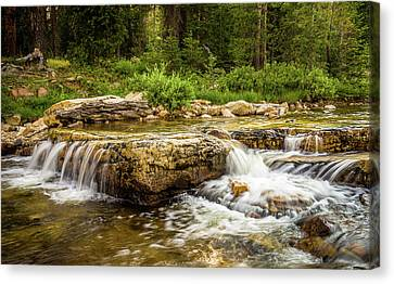 Peaceful Waters - Upper Provo River Canvas Print by TL Mair