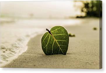 Peaceful Zen Sand Beach Art Photography Prints Canvas Print by Wall Art Prints