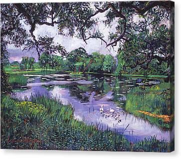 Swans... Canvas Print - Peacefull Lake by David Lloyd Glover