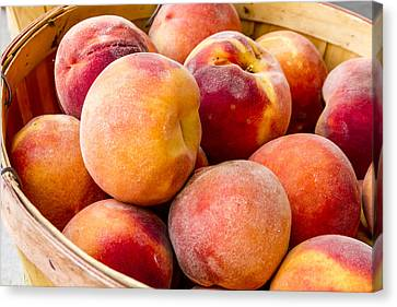 Locally Grown Canvas Print - Peach Beauties by Teri Virbickis