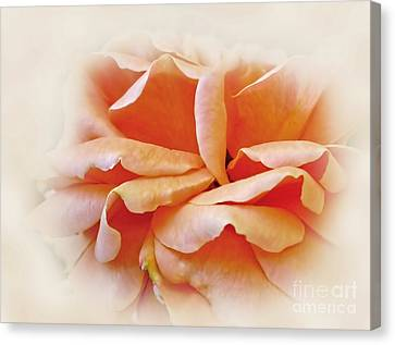 Peach Delight Canvas Print by Kaye Menner