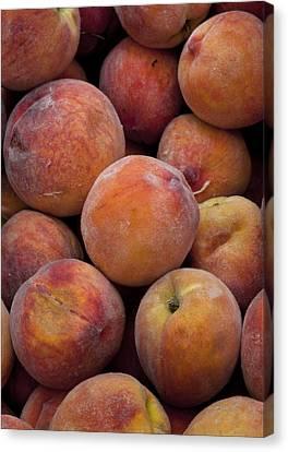 Peaches 1 Canvas Print by Robert Ullmann