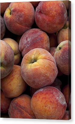 Peaches 2 Canvas Print by Robert Ullmann