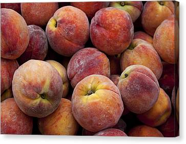Peaches 3 Canvas Print by Robert Ullmann