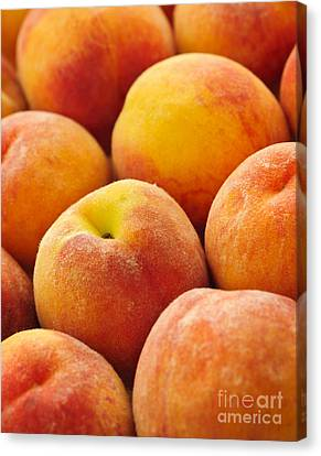 Peaches Background Canvas Print by Elena Elisseeva