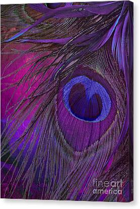 Peacock Candy Purple  Canvas Print