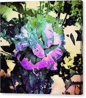 Peacock Flower Canvas Print by Susan Maxwell Schmidt