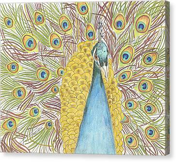 Canvas Print featuring the drawing Peacock One by Arlene Crafton