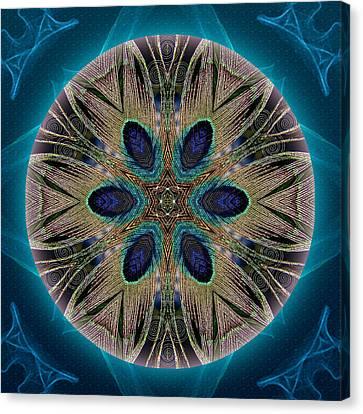 Peacock Power Canvas Print