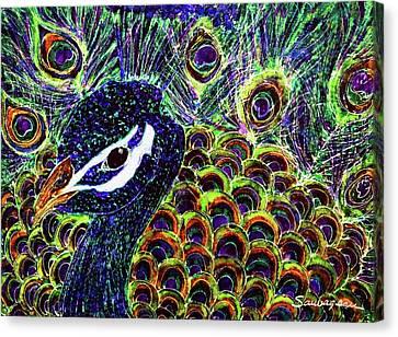Peacock Stare Canvas Print