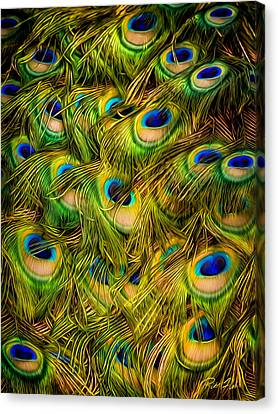 Canvas Print featuring the photograph Peacock Tails by Rikk Flohr