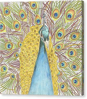 Canvas Print featuring the drawing Peacock Two by Arlene Crafton