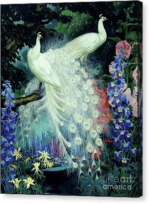 Peacocks And Hollyhocks Canvas Print by Pg Reproductions