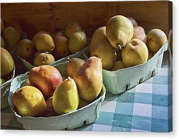 Pear Golden Canvas Print by Caitlyn  Grasso