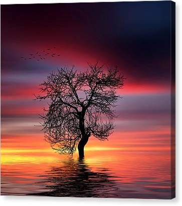 Pear On Lake Canvas Print by Bess Hamiti