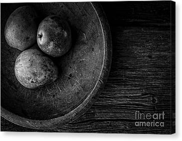 Pear Still Life In Black And White Canvas Print by Edward Fielding
