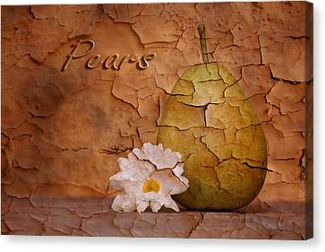 Peeling Canvas Print - Pear With Daisy by Tom Mc Nemar