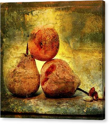 Aging Canvas Print - Pears by Bernard Jaubert