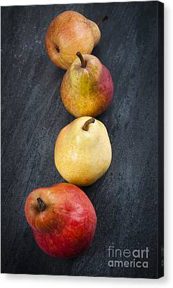 Pears From Above Canvas Print
