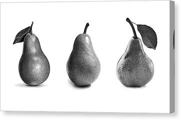 Pears In Black And White Canvas Print by Mark Rogan
