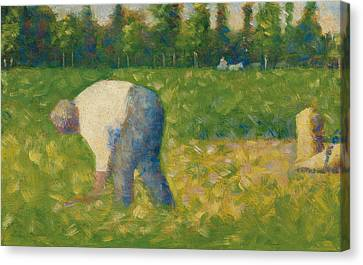 Peasant Working Canvas Print by Georges Pierre Seurat